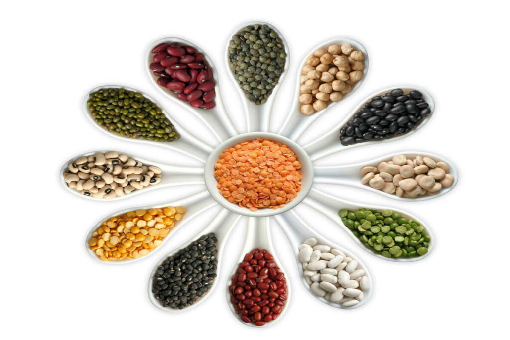Pulses of India