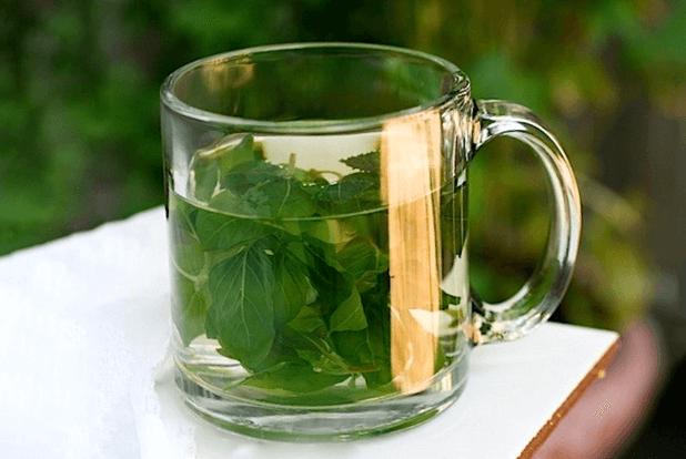 Basil Leaves water benefits