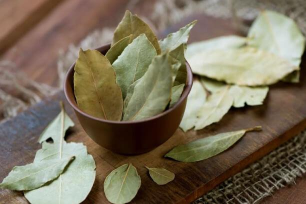 Bel Leaves as ayurvedic medicine for diabetes