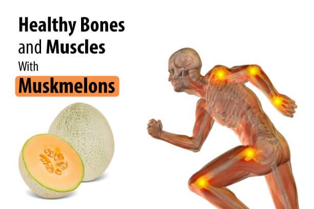 Muskmelon for Strong Bones