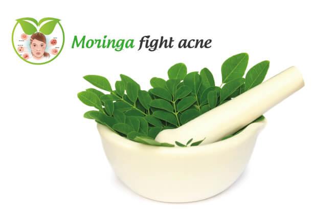 Moringa fight acne