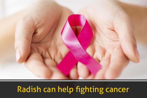 Radish can help fighting Cancers